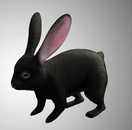 Black Rabbit 3d mode