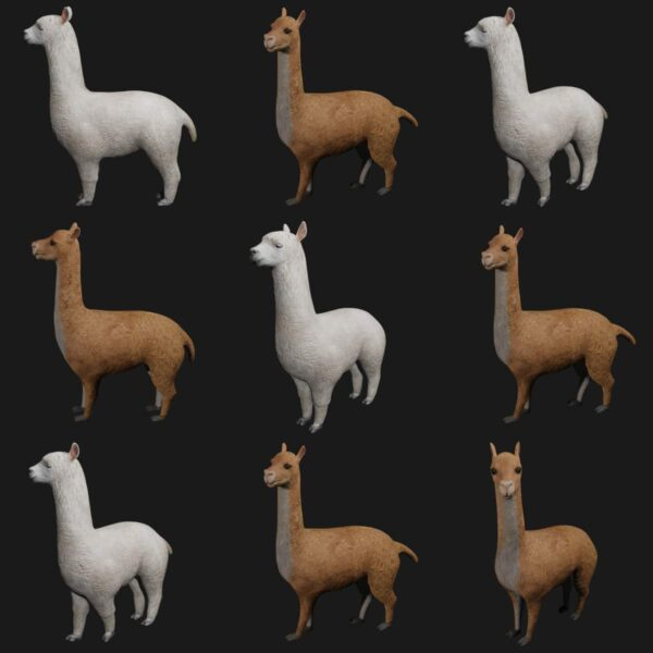 alpaca llama collection 3d model