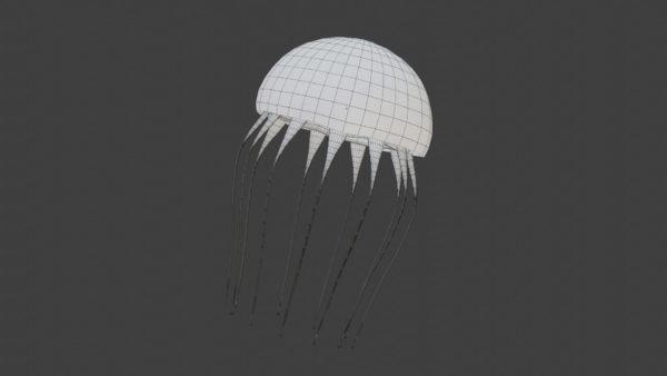 Jellyfish 3d model